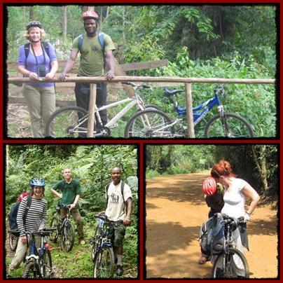 Mountain Biking through Bwindi Impenetrable Forest