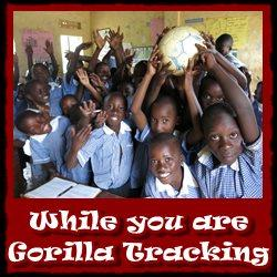 While-you-are-gorilla-tracking