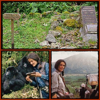 Dian-Fossey-in-life-her-grave