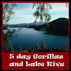 5-days-gorillas-lake-kivu