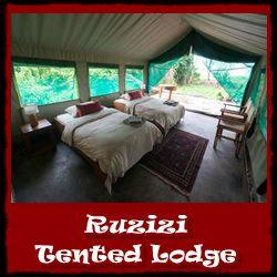 Lodging Choices - Akagera National Park