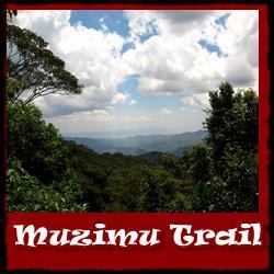 Muzimu-Trail