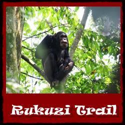 Rukuzi-Trail