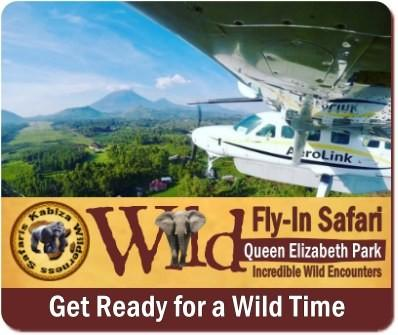 Fly-In Wildlife Safari