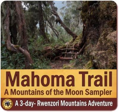 3-Day Mahoma Trail Hike - Rwenzori Mountains