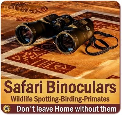 Binoculars for your African Safari