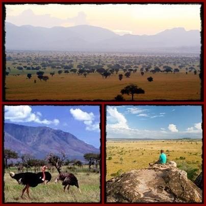 kidepo-safaris-page-1