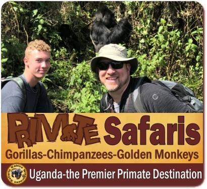 Family Gorilla Trekking Safari with Teens