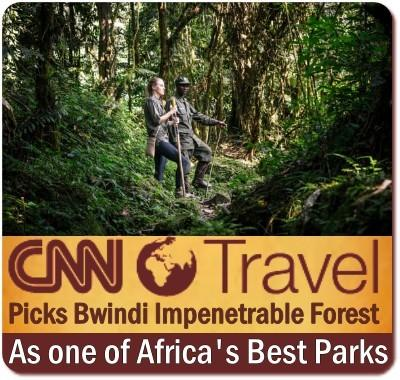 CNN names Bwindi Impenetrable Forest one of the 5 Best Parks in Africa