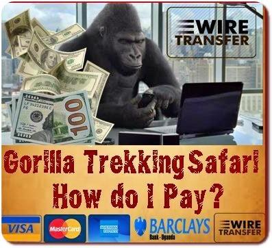 The Ways of How can I pay for a Safari with Kabiza Wilderness Safaris