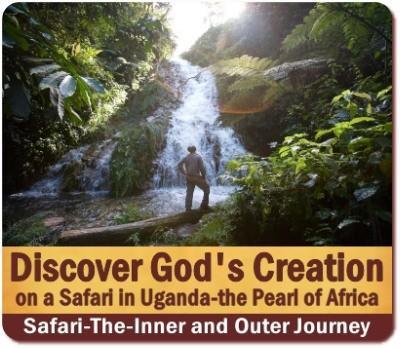 Discover the Creation of God on Safari