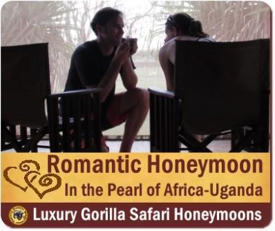 Luxury Gorilla Safari Honeymoon