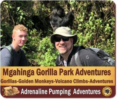 Gorilla Trekking Safaris in Mgahinga Gorilla Park