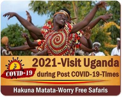 Getting to Uganda for a Safari