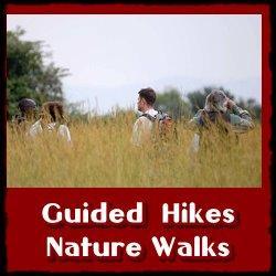 kabwoya-nature-walks