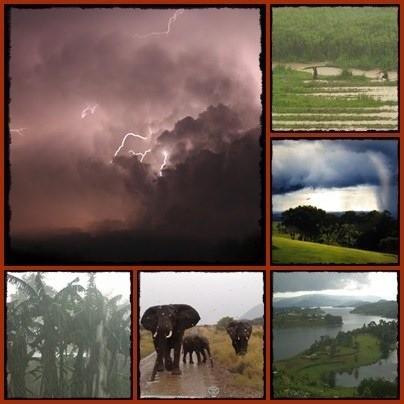 The-Rains-in-Africa-Uganda.jpg