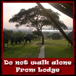 Do-not-walk-alone-from-Lodge