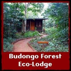budongo-eco-lodge-small