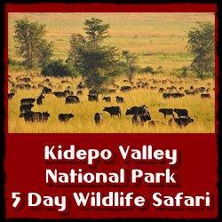 5-day-wildlife-safari-kidepo