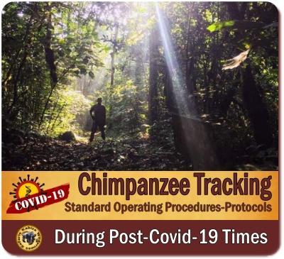 Chimpanzee Trekking Rules - Regulations
