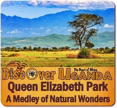 5-Day Queen Elizabeth Park Luxury Safari