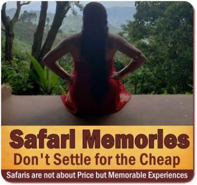 Comparing the Price of Safaris