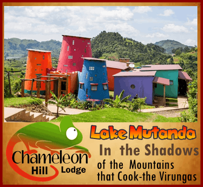 Chameleon Hill Lodge