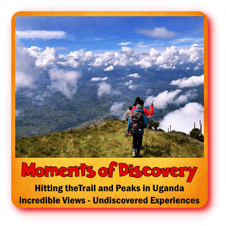 v=Hitting the Trail- The Best Hiking Safaris in Uganda