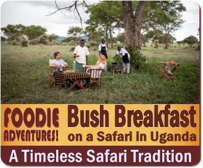 Bush Breakfast on Safari