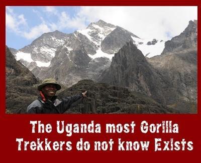 Gorilla Trekkers miss what Biodiverse Uganda has to offer