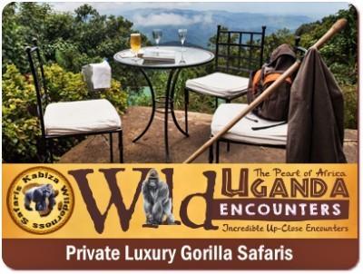 3-Day Luxury Gorilla Trekking Safari