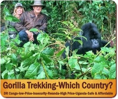 Which is the best Country to see Mountain Gorillas in Africa?