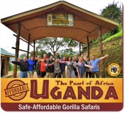 Affordable Gorilla Safaris in Uganda