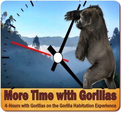MORE TIME with the Primates Luxury Safari