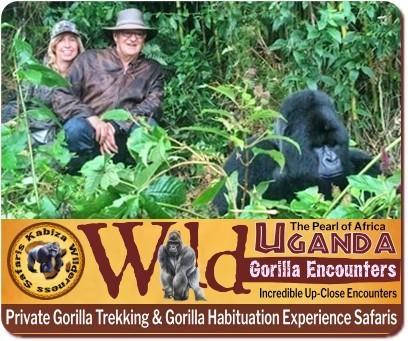 Gorilla Safari Planner