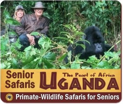 Gorilla Trekking Safaris for Seniors