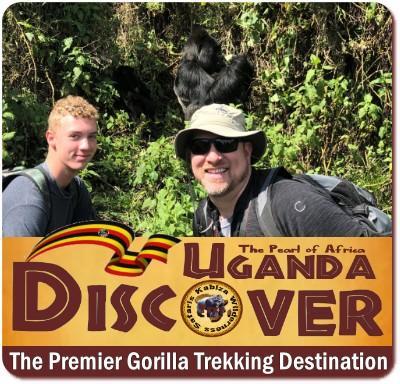 Comparing Gorilla Trekking