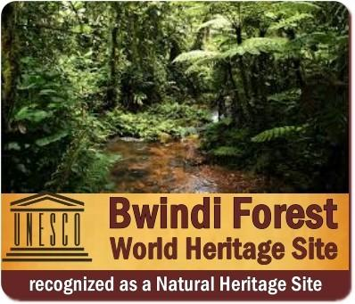 Bwindi Impenetrable Forest - UNESCO World Heritage Site
