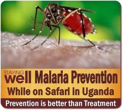 Avoid getting Malaria