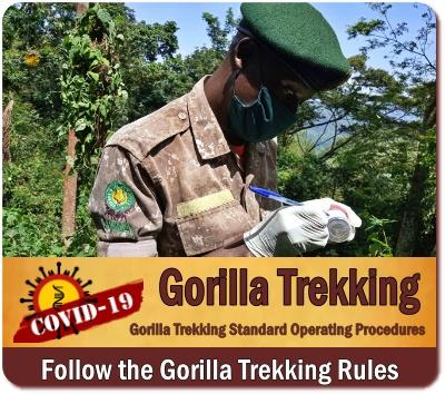 Gorilla Trekking- Rules - Guide Lines