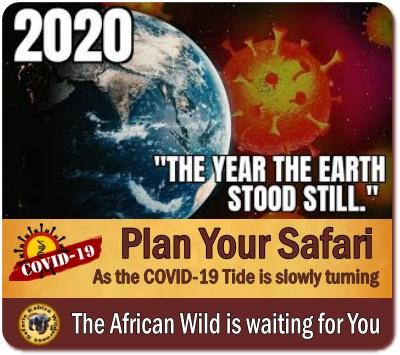 Uganda is a safer Choice for a Post-COVID-19 Safari