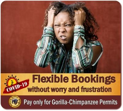 COVID-19 Flexible Booking Policy