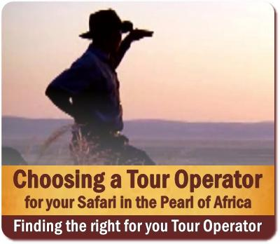 Choosing the right Tour Operator for your Safari in Uganda